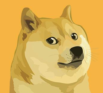 DogeVault said it lost about $130,000 worth of the virtual currency dogecoin after hackers accessed its virtual machines.