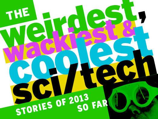 In Pictures: The weirdest, wackiest and coolest sci/tech stories of 2013 so far